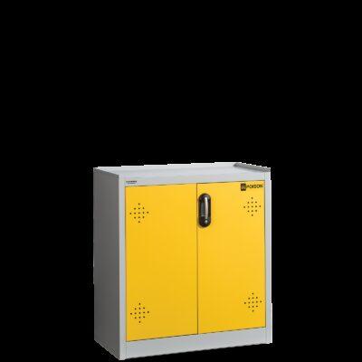 Dulap pentru depozitarea substanțelor chimice și toxice cu 2 tavi POISON 100093